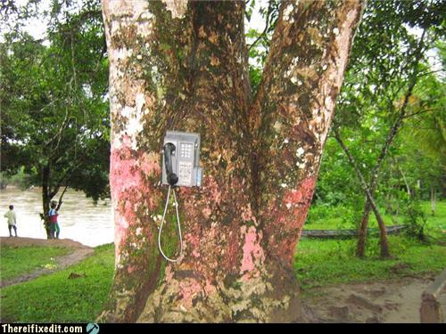 In Case Of Emergency Use The Phone Tree Randomoverload