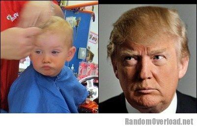 Image babys-st-haircut-totally-looks-like-donald-trump.jpg