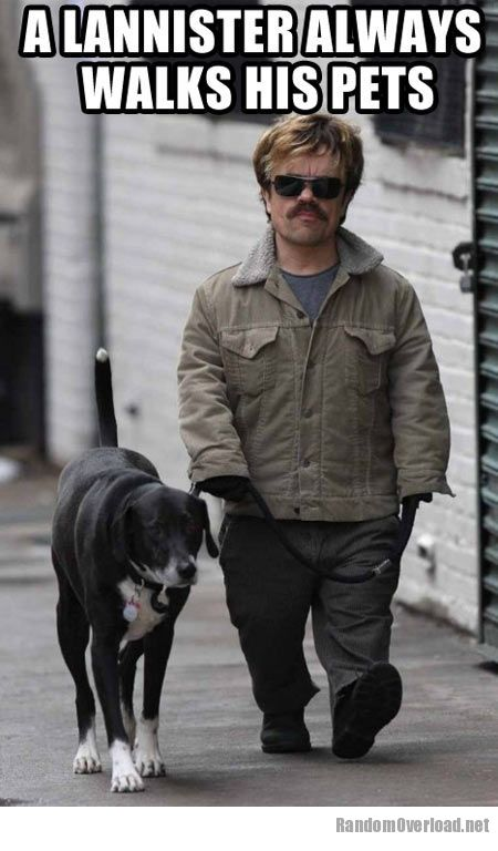 Peter walking his dog