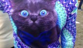 Image funny-tshirt-hypnotic-cat-colors.jpg