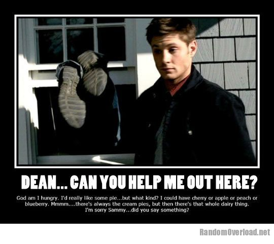 No Spoilers Dean Summed Up In One Photo Supernatural