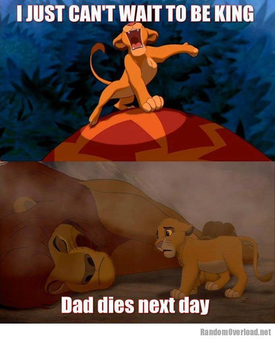 Bad Luck Lion Funny Lion King Jokes