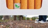 Image cool-biodegradable-cigarettes-filters-seed.jpg