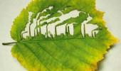 Image cool-carving-leaf-city.jpg
