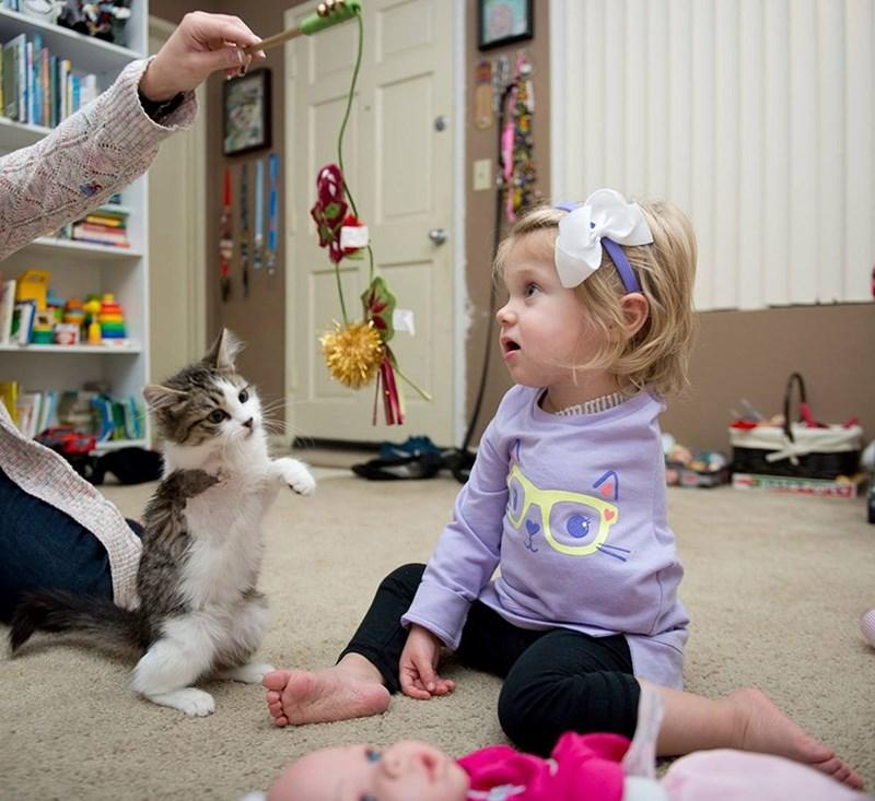 news-love-kitten-amputee-girl-best-friends