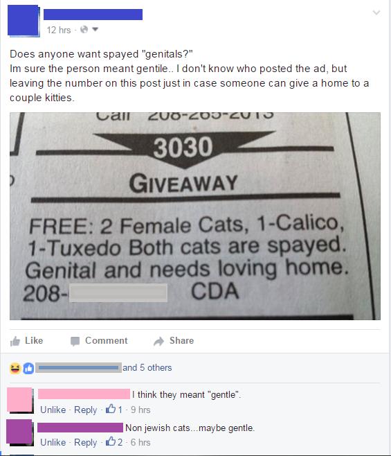 grammar,FAIL,failbook,facebook