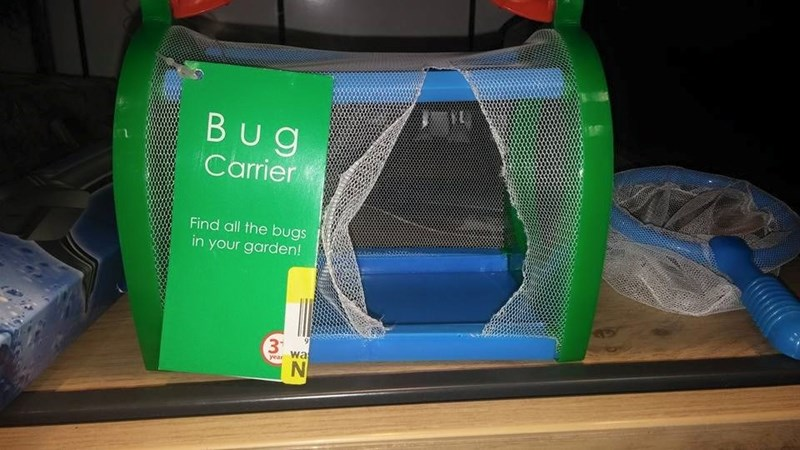 bugs,FAIL,products