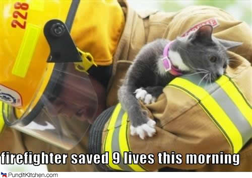fireman and a lolcat