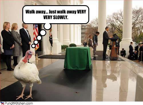 Barack Obama and the annual turkey pardon