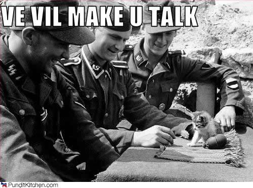 nazis and a kitten