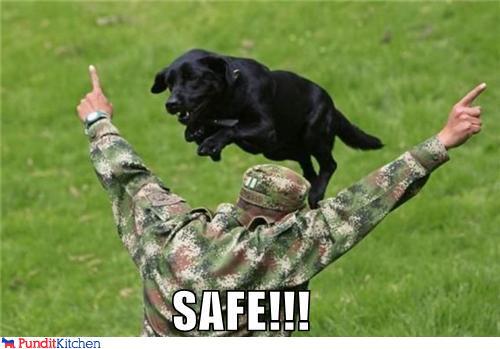 SAFE!!!