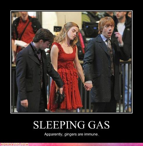 funny celebrity pictures - SLEEPING GAS