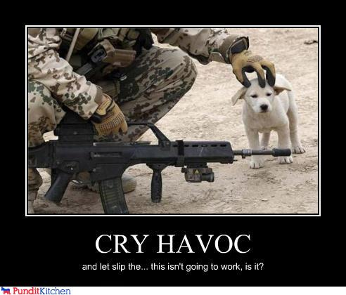 political pictures - CRY HAVOC