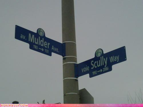 X-Files Marks The Spot
