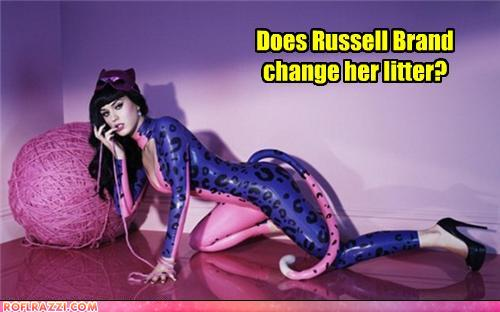 funny celebrity pictures - Does Russell Brand change her litter?