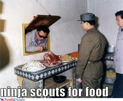 ninja scouts for food