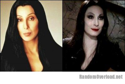 Tll Classic Cher Totally Looks Like Morticia Addams