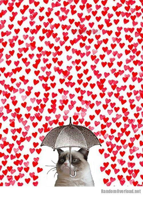 Grumpy Valentineu0027s Day