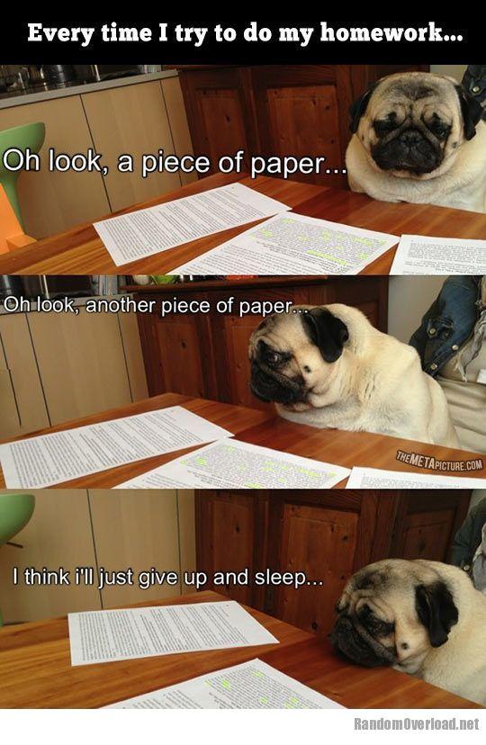 I do my bf homework