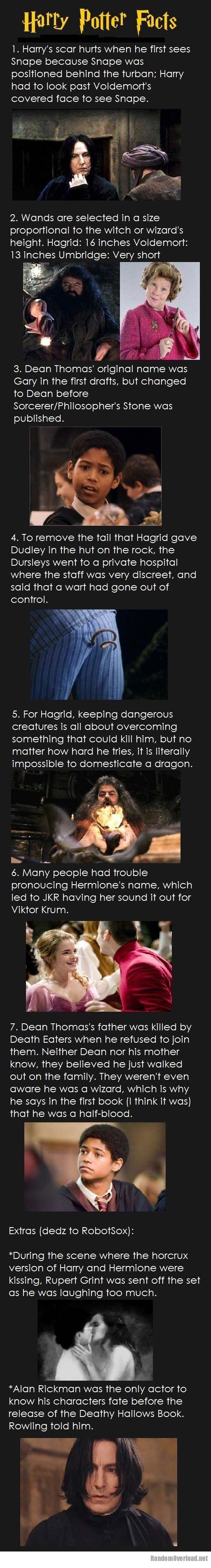 Harry Potter Book Facts : Facts you probably didn t know about harry potter