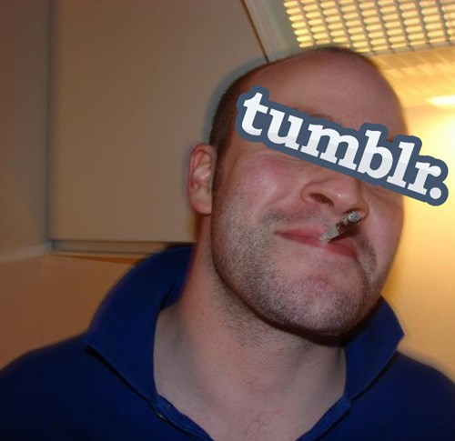tumblr updated its terms and conditions to be the most internet y