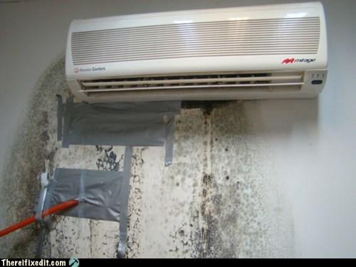 Attic Condensation Mold Attic Venting Attic Mold How To