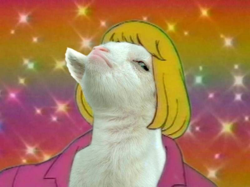 list,goats,photoshop,funny