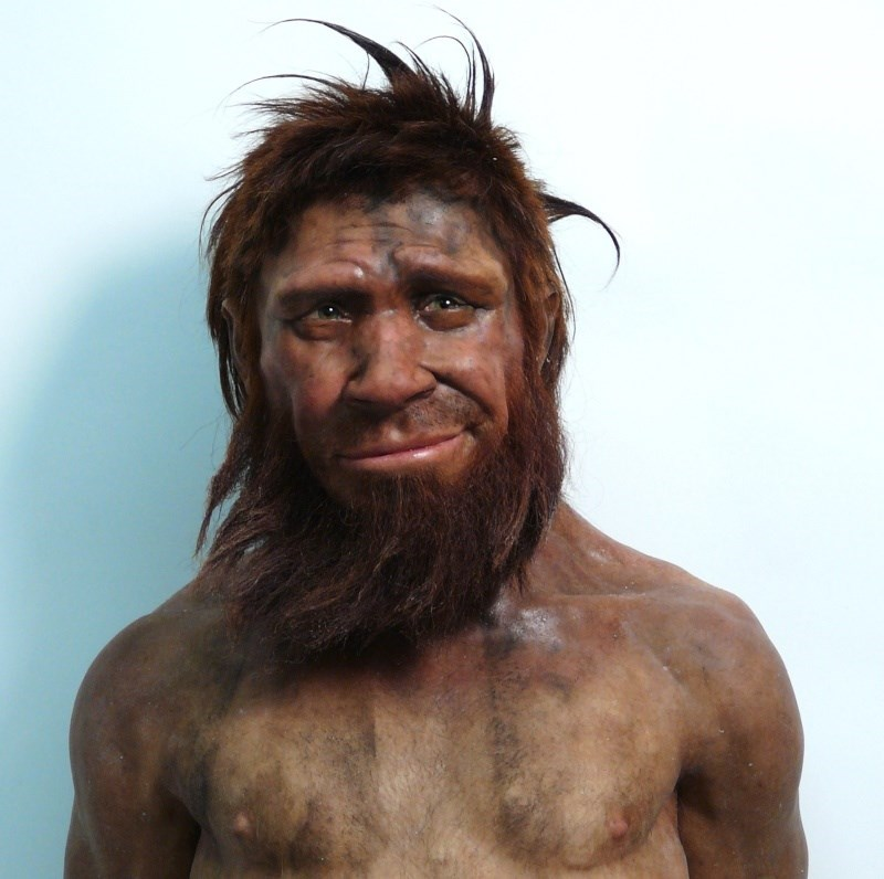 list,photoshop,photoshop battle,neanderthal