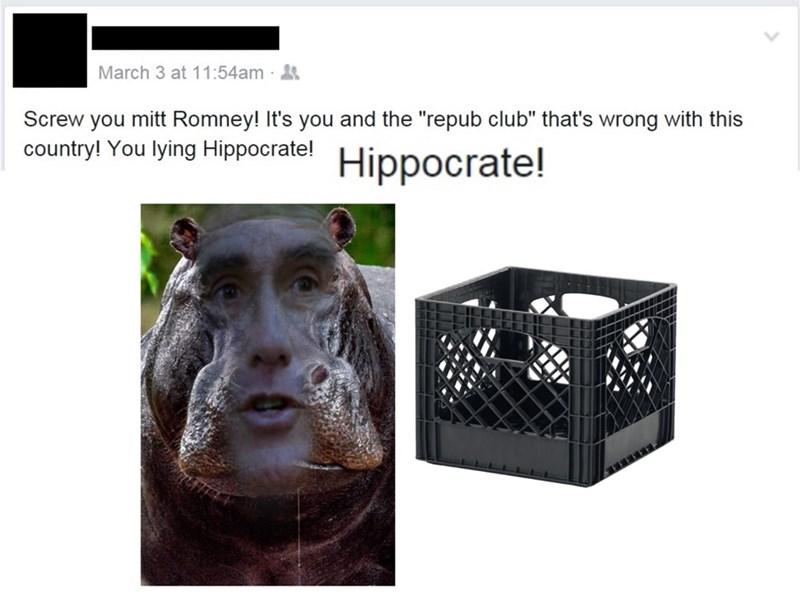 pun,Mitt Romney,facebook,politics